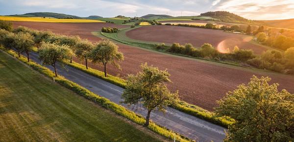 Aus der Presse: Heißer Sommer zeigt, wie wichtig Grünflächen sind