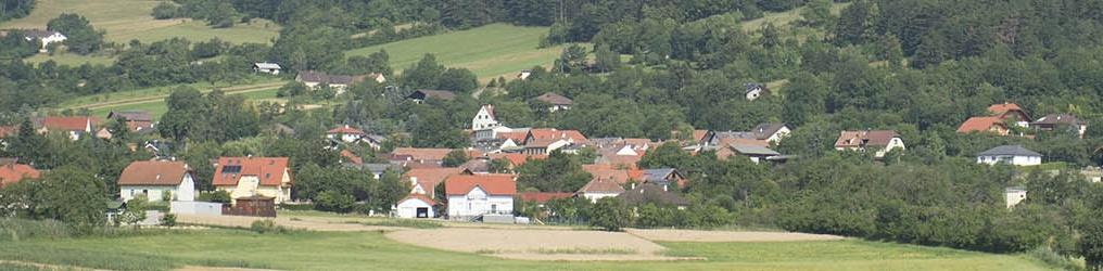 Örtliche Raumordnung in der Stadtgemeinde Ternitz